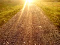 Solen och D-vitamin