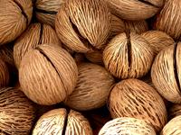 kokosfett nyttigt onyttigt