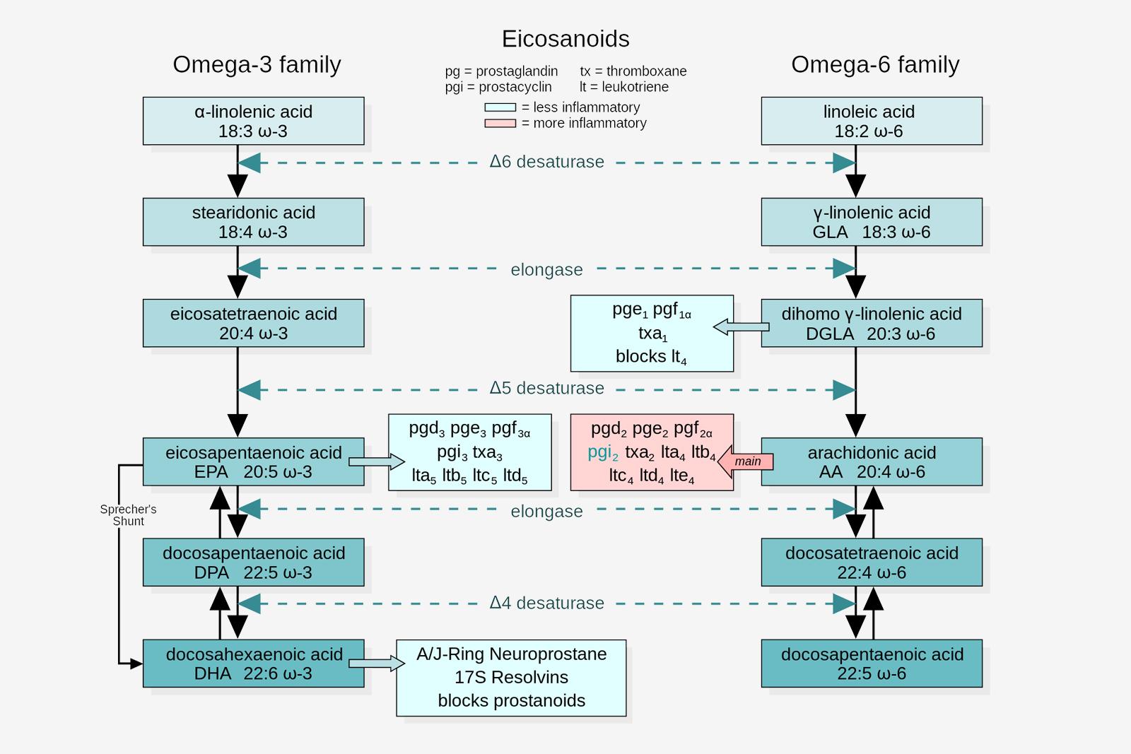 Högkoncentrerad omega-3, nej tack!
