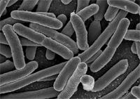 kolloidalt silver mot urinvägsinfektion